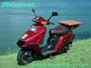 Melawend_-_a_1985_Honda_Elite_Spacy_250
