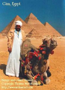 aaaaaaaaaaaaa - Farage camel Pyramids