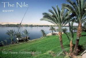 ddddddddd - the Nile and felluca