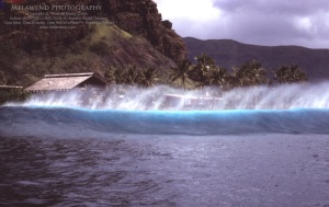 1 - HAWAII OAHU IMG_0015