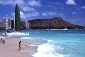 1 - HAWAII OAHU IMG_0017aaa