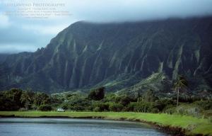 1 - HAWAII OAHU IMG_0165