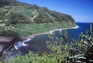 4 - HAWAII MAUI IMG_0013