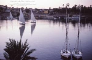 EGYPT ASWAN IMG_0081