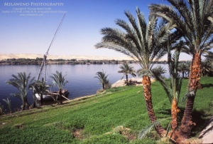 EGYPT IMG_0077