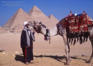 EGYPT PYRAMIDS IMG_0158