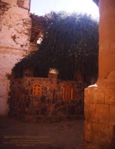 EGYPT - Sinai _IMG_0019