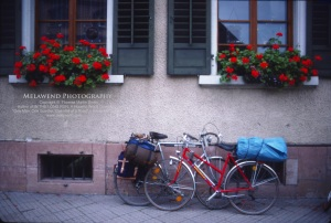 GERMANY _IMG_0014