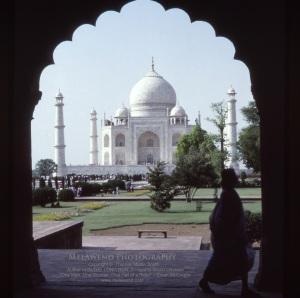 INDIA TAJ IMG_0011