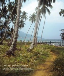 MALAYSIA IMG_0023 (2)