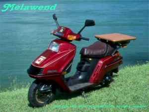 MELAWEND _a_1985_Honda_Elite_Spacy_250