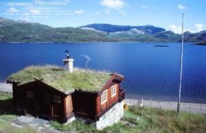 NORWAY IMG_0184