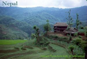 Nepal - farm in the Himalyan foothills