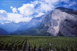 SWITZERLAND IMG_0046 (2)