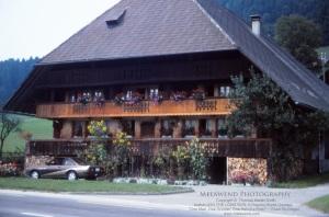 SWITZERLAND IMG_0114