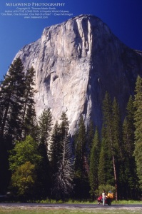 USA - Yosemite_IMG_0017aaa