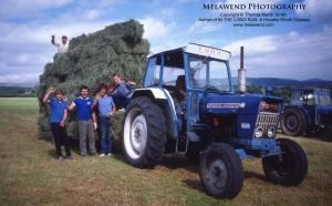 WALES - hay